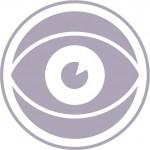 12168 Belbin icons-FINAL WEB