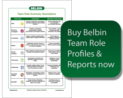 Belbin Team Role Profiles
